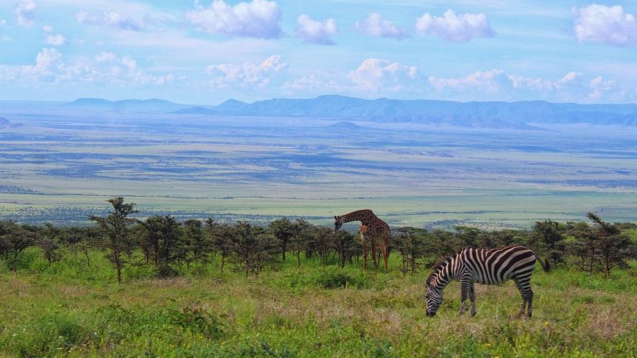 タンザニア・ンゴロンゴロ国立公園