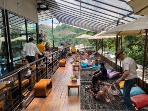 ジャングル デュ カフェ
