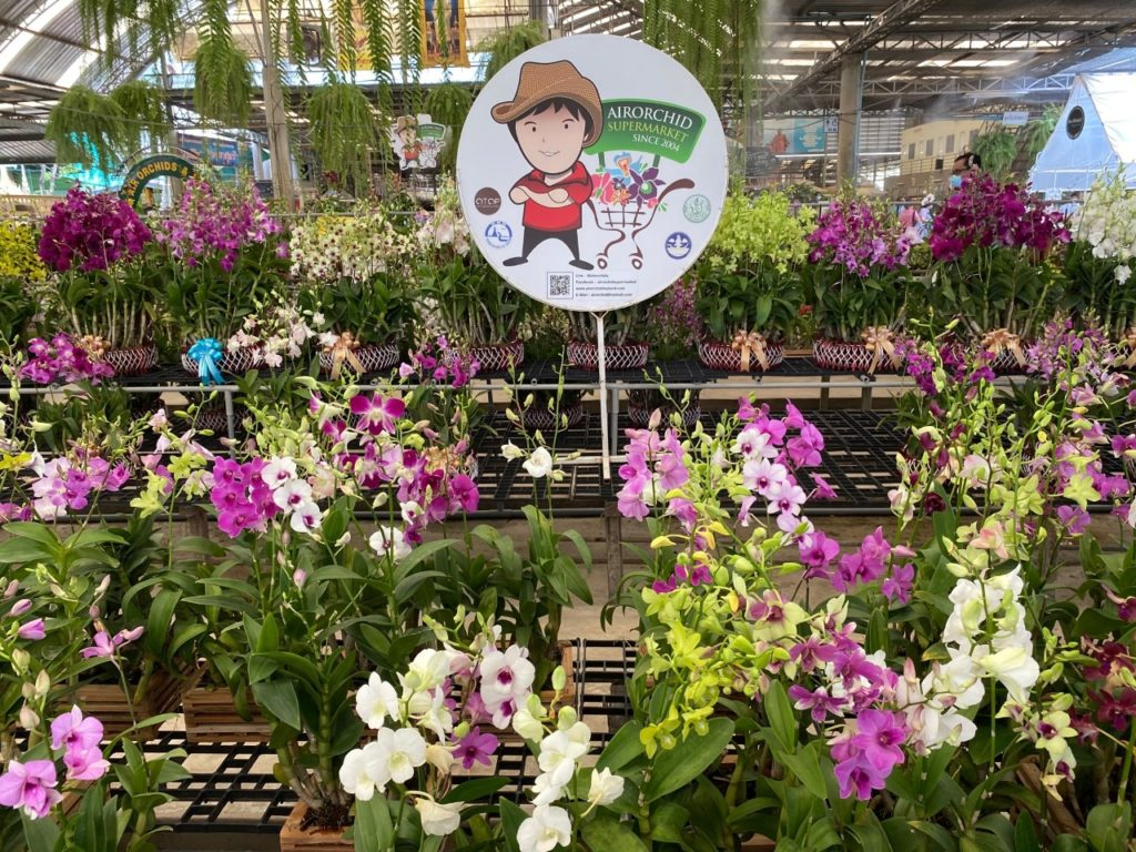 Air Orchids Supermarket & Lab